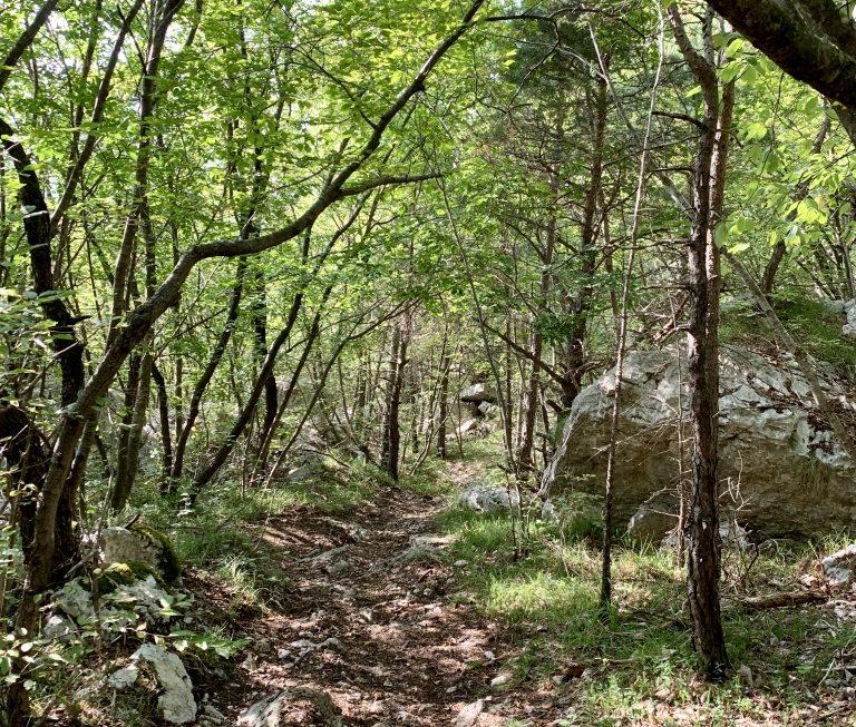 Der Trail unterhalb der Capanna Caduti del Monte Baldo war ein wirklich lohnenswerter Umweg.