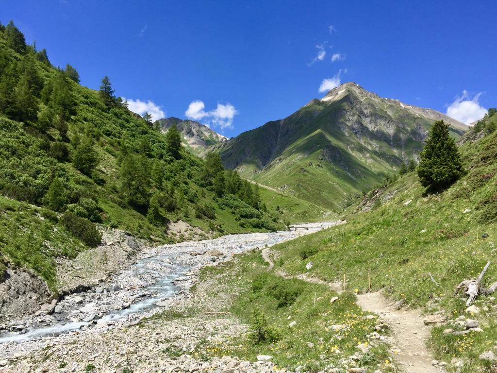 Da kommen wir her! Der Trail war Zucker und (obwohl er tatsächlich recht lang war) gefühlt viel zu kurz.